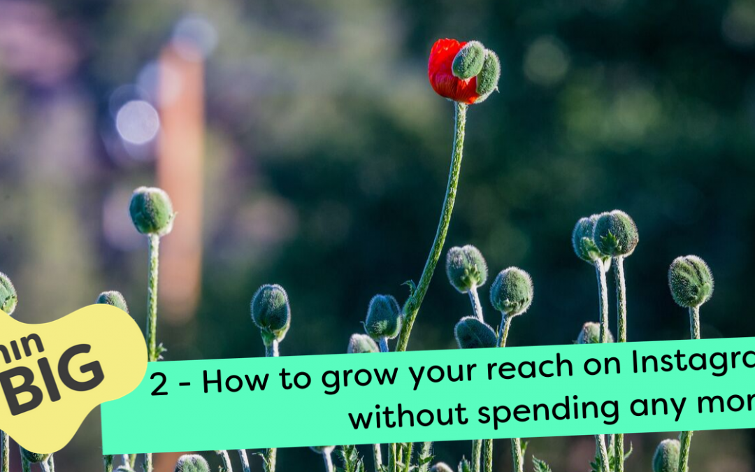 Free Instagram tactics to grow your reach